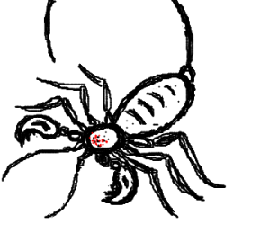 Scorpion Spider Hybrid