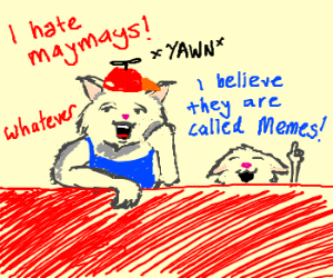 Catboy hates memes. Good for him!