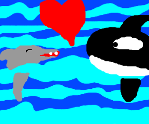 A dolphin talking whit a whale, whit love.