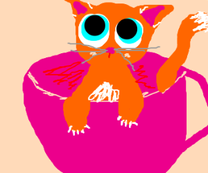 cat in a cup