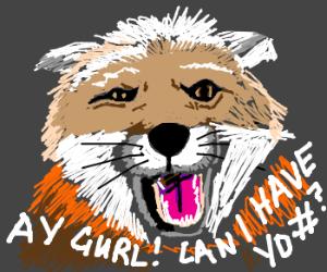 Confident fox is also a massive playaaaa