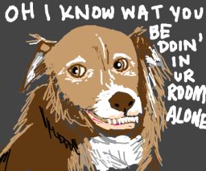 Big bear knows your secrets
