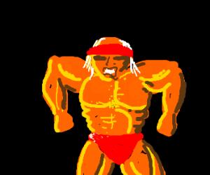 Hulk Hogan could really use rehab.