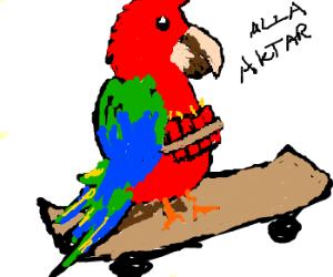 Radical skateboarding parrot jihad