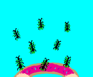 Donuts: a sure way to contract ANTS