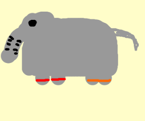 Elephant undecided on his hand-cuff colour