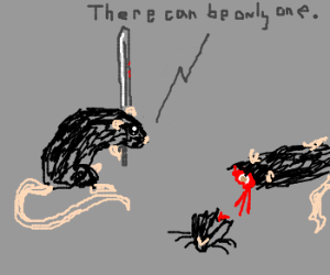 Rat vows its victory