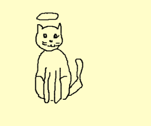Angel cat thinks fisting is wrong