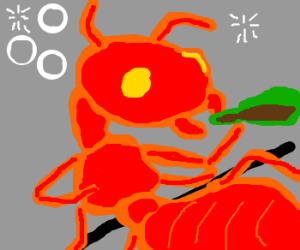 Giant red ant is drunk