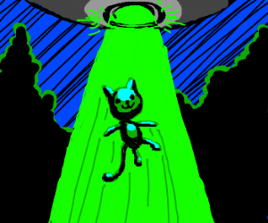 UFO abducts cat