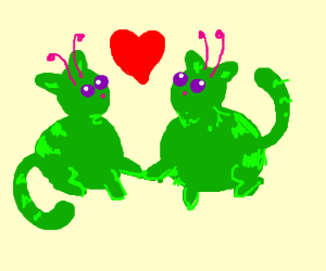 alien cat love
