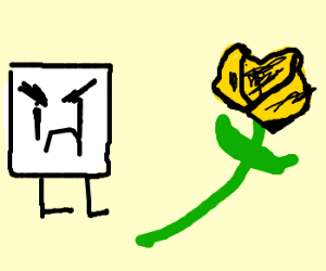 Yellow Rose of Texas, white square approaching