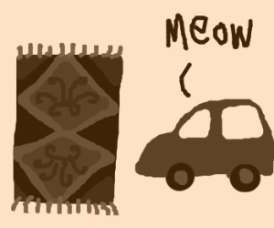 A car a pet and a carpet