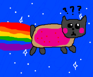 nyan cat is confused