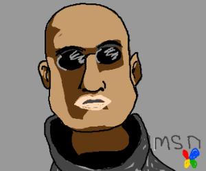 Inquiring Morpheus about Matrix over MSN