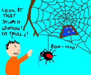 Man criticizes a spider's small window