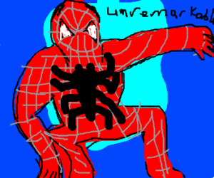 The Unremarkable Spider Man