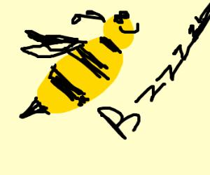 Bumble bee buzzes!