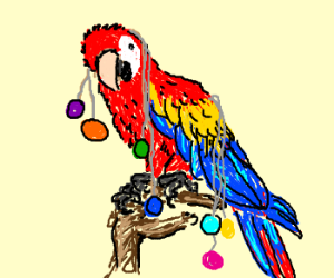 Parrot with baubles hanging off it