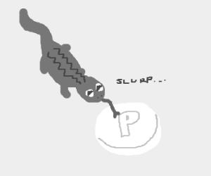 A lizard licks a large Polo mint