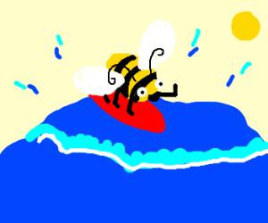 Bee on a Surfboard