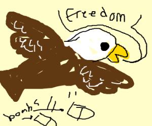 American eagle nukes slag heap
