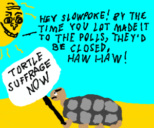 Pro-suffrage turtle heckled by sun