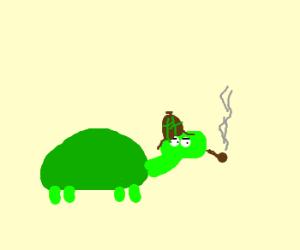 Turtle Sherlock Holmes smoking a pipe