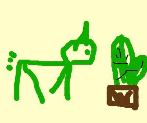 Unicorn chasing a cactus