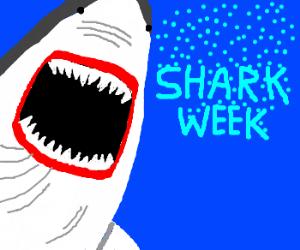 YEEEAAAAAHHHH SHARK WEEK