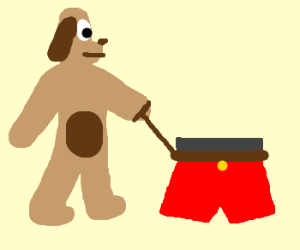 upright dog walks leashed red boxer shorts