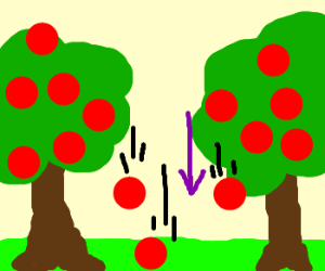 Apples Falling From Trees