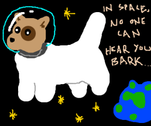 Dog-astronaut from dog-Earth in dog-space.
