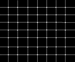 "Successful ""black dot grid illusion"""