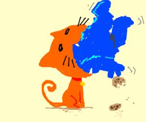 cat eats cookie monster