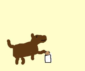 Dog dunking