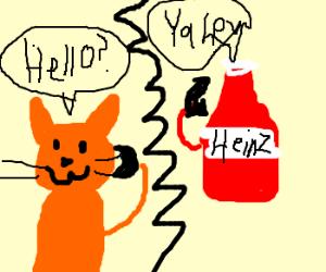 Awkward phone conversation: Ketchup on Kitten