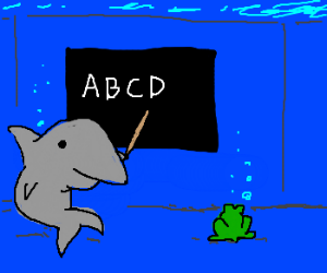 Frog visits aquarium; shark teaches it to read
