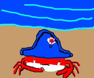 Neapolitan Crab