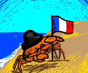 Napoleon Crab conquers the vast beach.