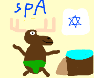 moose going in religious spa