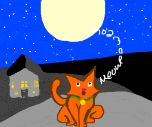 House cat howls at the moon.