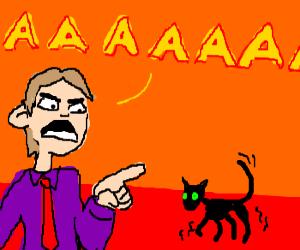 man screams at anorexic cat