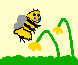 Bee-woman weeps over withered flowers