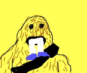 Chewbaca eats man