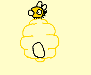 bee on a bee hive