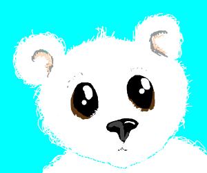 Cute and cuddly polar bear