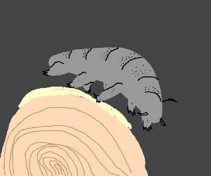 Tardigrade on a dust particle