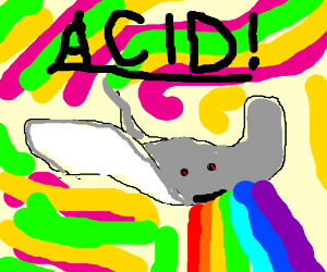 sting ray tripping on acid
