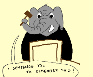 Judgelephant makes a ruling you'l never forget